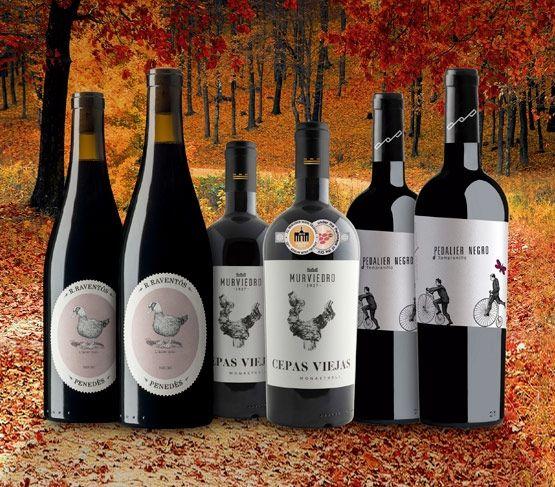 Selección de Vinos de Octubre 18