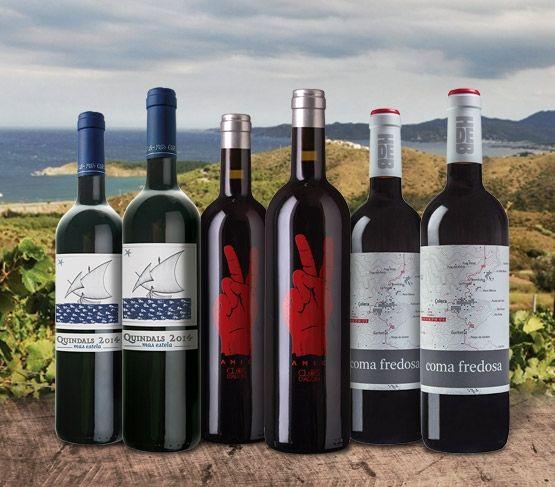 Selección de Vinos de Febrero 19