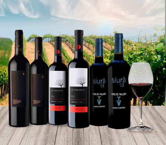 Selección de Vinos de Noviembre 17 Sin Regalo VINOTECA EN CASA