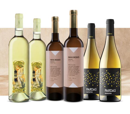 Selección Vinos Blancos del Penedès 21