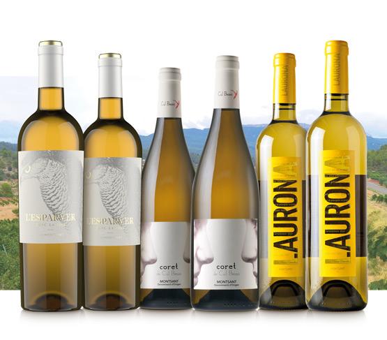 Selección Vinos Blancos del Montsant 21