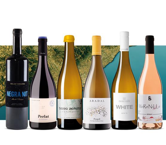 Selección de Vinos Agosto 21