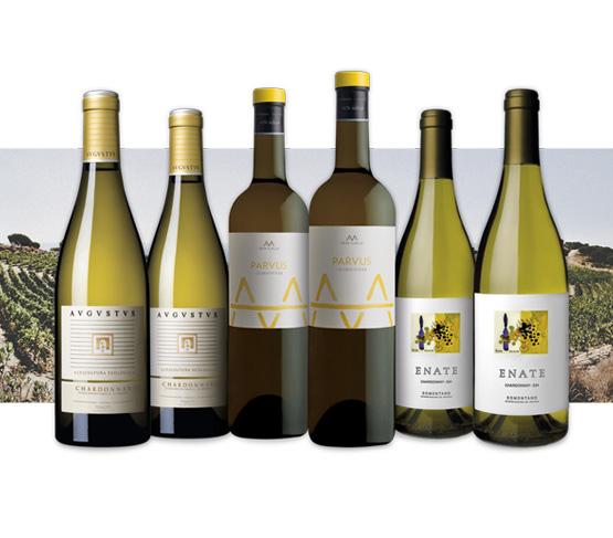 SELECCIÓN VINOS BLANCOS 100% Chardonnay